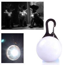 Mini Lampe LED Lumière de Nuit de Sécurité pour Collier Chien / Blanc