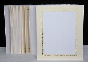 Portraitmappe / Leporello für 50 Fotos 15x20 - Creme mit goldener Kante - FA300G