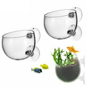 Aquarium Plant Pot Glass Cylinder Cup With Suckers Seeds Coral Moss Holder 6x7cm