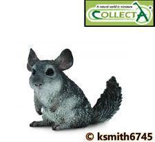 Collecta longtailed CINCILLA 'solido in plastica giocattolo Wild Zoo Animale * NUOVO * 💥