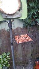 peanuts - 2Kg - birds pea nuts peanuts for birds