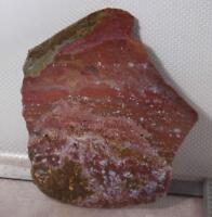 Polished Ocean Jasper lapidary specimen slab 14 oz