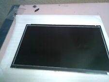 LCD 10.1 LED  LP181WSA (TL) (P1)HP MINI 210_2002 ,PERFETTAMENTE FUNZIONANTE.