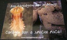 United Kingdom Wales Cardigan Bay a special place Crown - unused