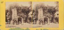 Vintage/Antique Stereoview Card - Grand Staircase, Raglan Castle, Wales