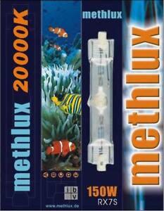 HQI Brenner HIT 150W 20.000K - blau Aquarium Metal Halide