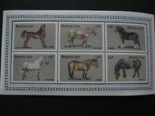 Burkina Faso 1999 horses  sheetlet  SCOTT No.1146  I201807