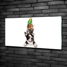 Glas-Bild Wandbilder Druck auf Glas 100x50 Deko Tiere Gruppe von Tieren