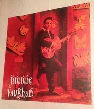 Stevie Ray Vaughan JIMMIE VAUGHAN Strange Pleasure 1994 Original Promo Poster