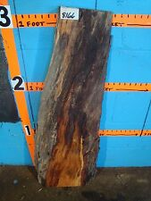 """# 8166 spalted cherry live edge slab lumber rustic 38""""L 8 1/2"""" W 2 3/4"""" T"""