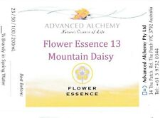 Flower Essence #13 Support - Advanced Alchemy 50ml Mountain Daisy