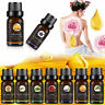 100% Pure Natural Essential Oils Therapeutic Grade Aromatherapy Oil 10ml Hot