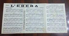 Doppio Spartito musicale 1958 - L'edera / Il Tarlo dell'amore