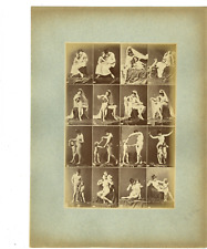 Calavas, étude pour peintre, maternité vintage albume print Tirage albuminé