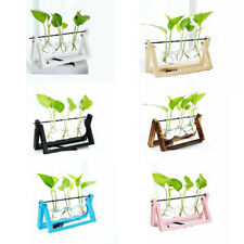 Wooden Stand Hanging Glass Vase Flower Plant Pot Hydroponic Container