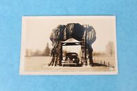 VINTAGE RPPC REAL PHOTO POSTCARD GIANT CEDAR STUMP HWY 101 WASHINGTON UNUSED
