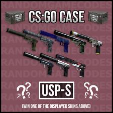 CSGO Random USP-S Skin - Counter-Strike Global Offensive - CHEAPEST
