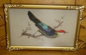 Antique / Vintage Real Feather Bird Picture w/ Watercolor Painting #1
