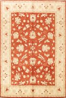 Floral Peshawar-Chobi Oriental Hand-knotted Area Rug Classic Wool Carpet 8'x10'