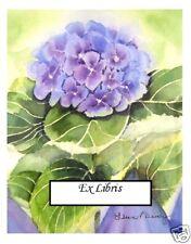 Bookplates,One Blue Hydrangea,Watercolr repro,Ex Libris
