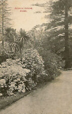 SYDNEY(Australia) : Botanical Garden-borders