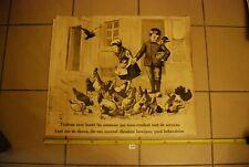 AF1 Ancienne affiche - Protection des animaux - Traitons les avec bonté