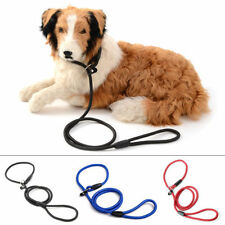 Laisses promenade, jogging en nylon pour chien