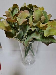 6pcs X Artificial Succulent Stem Latex 42cm Green/grey Home Decor
