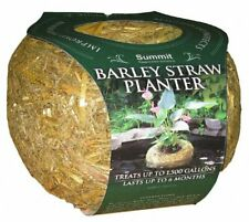 Summit Barley Straw Floating Planter Medium, Koi Pond Water Treatment Product