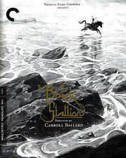 The Black Stallion (Blu-ray Disc, 2015, Criterion Collection)