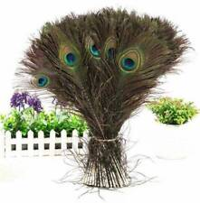 DIY Craft Art Stylish Decor Natural 10-12 Inch Peacock Tail Feathers