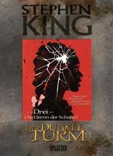 Der Dunkle Turm 14. Die Herrin der Schatten von Stephen King (2016, Gebundene Ausgabe)