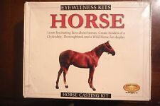 Clydesdale Thoroughbred & Wild Horse Model Kit by Skullduggery 2003 Educational