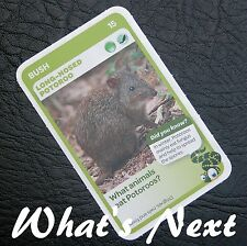 Woolworths <<AUSSIE ANIMALS>> Card 15/108 BUSH Long Nosed Potoroo (Free Post)