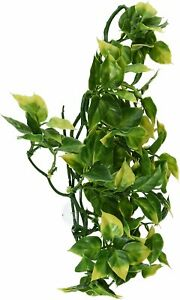 Exo Terra PT3011 Plastic Plant Amapallo, Medium 0015561230117