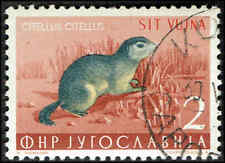 Scott # 93 - 1954 - ' Ground Squirrel ', Yugoslavia #398 ovpt in carmine