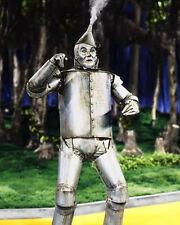 The Tin Man Wizard Of Oz 10x8 Photo