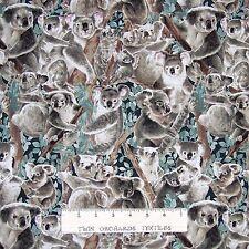 Koala Bear Fabric - Living Wonders Australia Animal - Fabri-Quilt YARD