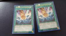 N°3723 - yu gi oh - destruction terrestre - lcyw-fr275 - lots de 2 cartes d