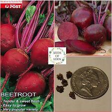 "50 BEETROOT ""PERFECT 3"" SEEDS(Beta vulgaris), Easy to grow"