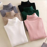 Womens Turtleneck kint Sweater Autumn Winter Knitted sweater Pullovers  jumper