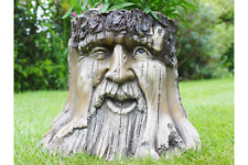 Amazing Green Man Planter Novelty Planter Tree Stump plant holder LOTR A