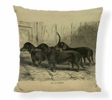Dachshund Dog Puppy  Vintage etching drawing painting  Cushion Cover sausages