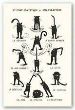 ANIMAL POSTER La Chat Domestique et Son Caractere Cat Moods 1890s