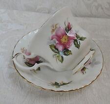 Tazza da tè Vintage Royal Albert Prairie Rose