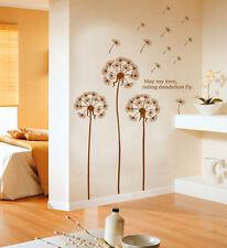 dente di Leone Decorazione muro grande casa fiori marrone stock UK DM57 0030