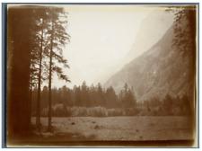 Suisse, Paysage montagneux  Vintage citrate print. Tirage citrate  13x18