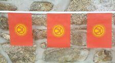 Kyrgyzstan Flag Polyester Bunting - Various Lengths