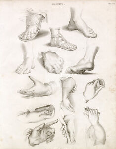 ANTIQUE Guide to Drawing Hands and Feet - Abraham REES 1800s Plate #B728