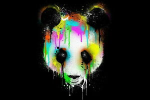 Art Print wall Decor Color Crying Panda abstract Oil painting Printed on canvas